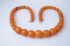 Vintage Baltic Amber necklace of butterscotch, caramel colour, 50 gram