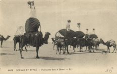 North Africa 92 x - mostly types from Algeria and Tunisia including occupations, Beduines and veiled women - 1900/1940