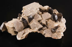 Smoky Quartz with Siderite on Microcline - 9 x 8.5 x 2.5 cm - 144 gm