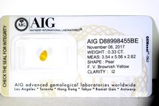 AIG Diamond – 0.33 ct – Fancy Vivid Brownish Yellow  –  * NO RESERVE PRICE *