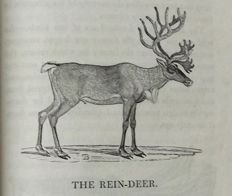 Thomas Bewick - A General History of Quadrupeds - 1824.