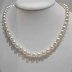 Luxury Vintage Necklace of Japanese Akoya pearls between 9 and 10 mm in diameter - No reserve