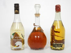 Pineau des Charentes Mallet + Poire williams brandy + decorated bottle with brandy 3 bottles
