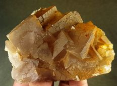Top Quality Cubic Shape Fluorite Crystals - 95 x 65 x 20mm - 223 gm