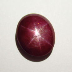 Star Ruby - 8.41 Ct - No reserve price