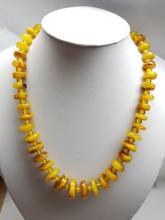 baltic amber butterscotch egg yolk  necklace, untreated 37.6 grams weight