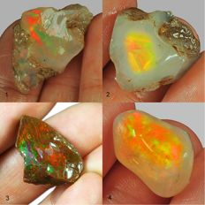 Four top lot of colour play effect Welo opal Ethiopia - 68,75 (4)