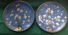 Lot of 2 cloisonné enamel plates - China - Second part of the 20th century