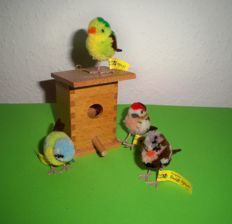 Steiff bird house and 4 Steiff birds