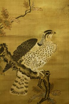 "Hanging scroll - ""Hawk on Tree"" - by 竹内甫記 Takeuchi Yoshinori(?-?) - Japan - Late 18th.early 19th century (Edo period) w/box"