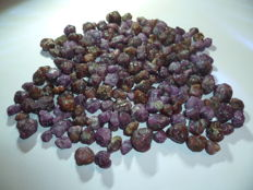 Lot with rough ruby stones from Africa - 1285 ct