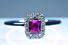 Ring 18 kt white gold and natural ruby .23 ct surrounded by 14 diamonds of .012 ct