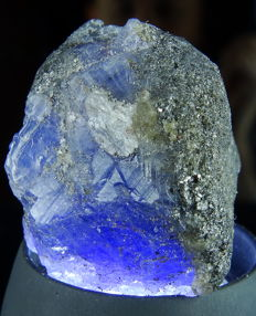 Large Tanzanite Crystal - Royal blue - 3,0 x 2,7 x 2,4 cm - 167,90 ct / 33,58 gm