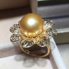 Natural seawater, golden pearl, 18K gold Ring. Pearl diameter: 13 mm. Weight: 3.5 G. A new-size 7.2 US-Free resizing