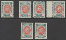 Belgium 1914 - Red Cross - King Albert I in medallion 5c green with 6 of the 8 mentioned varieties - OBP No. 132-V1 (1 loose tooth), V3, V4, V5, V7 and V8