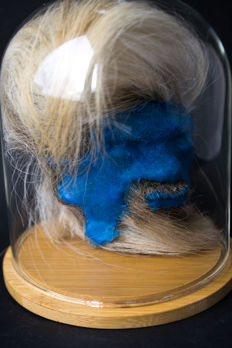 Warrior totem - blue-faced replica Jivaro Juju Shrunken Head in a glass dome - 150gm