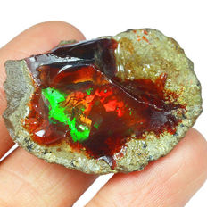 Natural Black Chocolate Opal Specimen - 36 x 27 x 14 mm - 62.6 ct