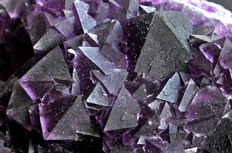 Intense violet octahedral Fluorite crystals on matrix - 13.2 X 9.8 X 4.4 cm - 601 gm