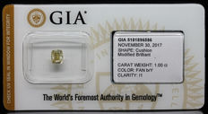 1.00 ct. GIA Certified Natural Fancy Brownish Yellow, Even Diamond - NO RESERVE