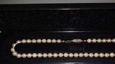 Vintage string of cultivated Akoya seawater pearls (knotted) and a white/ yellow 14 Crt gold closure, set with 2 small diamonds (tested)