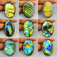 Faceted Labradorite Gemstone lot - 631 cts