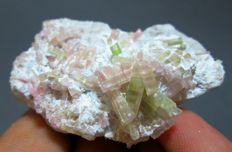 Pink with green watermelon tourmaline crystals in albite. - 4,9x4,1x2,4 cm. - 42gr