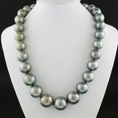 Luxurious silvery gret Tahiti pearl necklace 13.0 to 17.0 mm, brilliant clasp in 585 white gold ---No reserve price!---