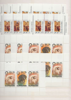 Suriname 1976/2010 - Selection of blocks in stock book