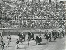 Corrida - Bullfighting - Lot of 39 photographs of June 1973 - 25 photos of the Nimes bullfighting and 14 pictures of the free running of bulls in Cassargues