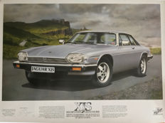 Jaguar  XJS Print Steve Fermor Limited Edition. Numbered