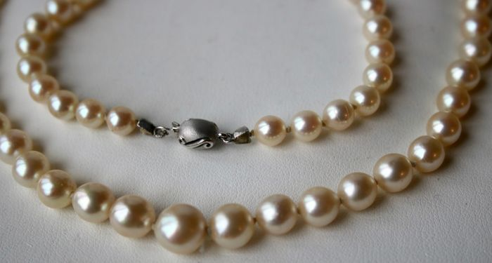 Japanese sea/salty water ivory-white Akoya pearls with a very shiny lustre aprox. Ø 5.9-9mm ASC. White satin gold 585/14kt. clasp brand marked GP.