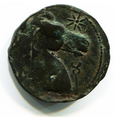 Greek Antiquity - Carthage - Sicily and Sardinia Mint - First Punic War 264-241 BC – Punic Great Bronze Dishekel Tanit Horse (14,96 gr., 28 mm.)