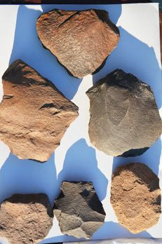 Lot of Early Paleolithic Proto-Bifaces- 10 x 18cm (5)
