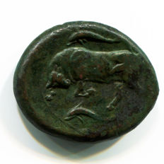 Greek Antiquity - Sicily: Syracuse Mint – Agathokles 317-289 BC - AE Hemilitron - (9,46 gr., 24 mm.)