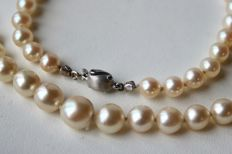 "Japanese sea/salty water ivory-white Akoya pearls with a very shiny lustre aprox. Ø 5.9-9mm ASC. White satin gold 585/14kt. clasp marked ""GP""."