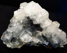 Shiny huge apophyllite crystal bunch on black chalcedony  - 18 x 16 cm - 1208 gm
