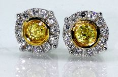 Earrings with   Fancy Deep Yellow diamonds ***No reserve price***