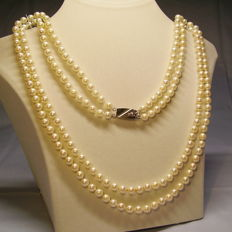 Qualitatively valuable, double row Akoya pearl necklace on a large 14 kt white gold clasp