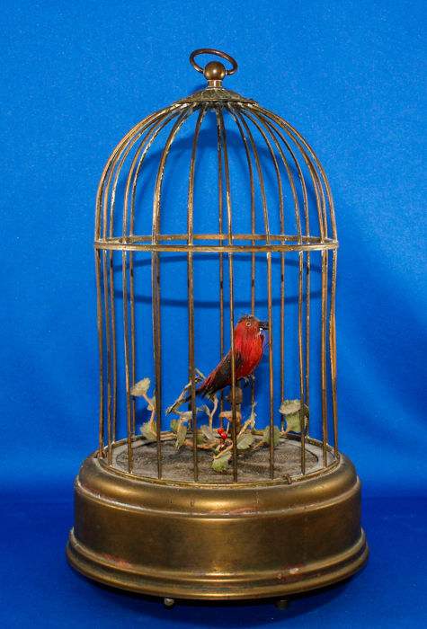 Large bird cage with music box and singing bird