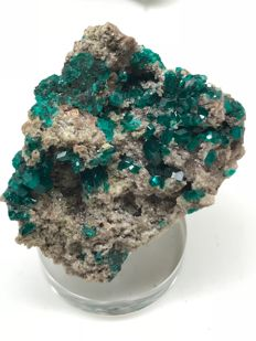 Very beautiful Dioptase from Tsuneb Namibia - 4.5 x 4 x 2.5 cm - 36 gm