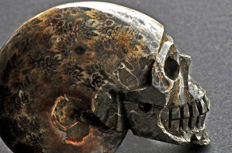 Finely detailed Ammonite skull - 9.9 X 7.6 X 4.2 cm - 352 gm