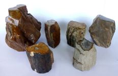 Decoration; 6 trunks of petrified wood - approx. 9750 grams - approx. 90 to 160 mm