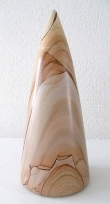 Polished sculpture of petrified wood (4.5 kilo!)