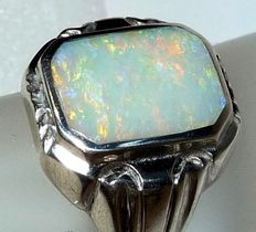 Men's ring in 800 silver – With a new distinguished full opal from Coober Pedy – Australia – In octagonal cut – No reserve price