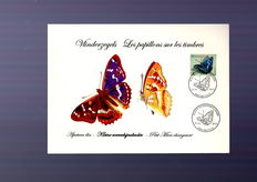 Belgium - set of different theme cards with special (commemorative) cancellation, including Buzin.