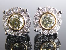 White gold ear studs set with exclusive natural yellow diamonds for a total of 0.60 ct --- no reserve ---