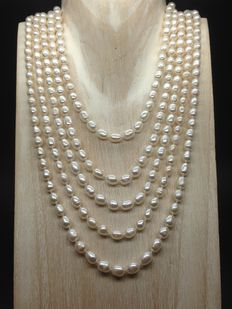 White rice freshwater  pearls extra long necklace 2,5m