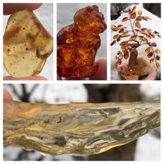 Collection of amber including copal  - red amber puss - Amber tree - 3 to 13 cm - 188 g