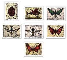 Bernard Buffet (after) - Les insectes
