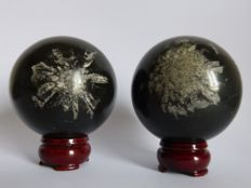 Pair of striking Chrysanthemum Stone spheres – 8 and 7.9cm – 1372kg  (2)